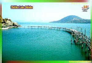 चिल्का झील की फोटो