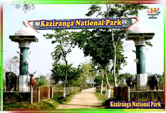 Kaziranga National Park & Tiger Reserve in Hindi